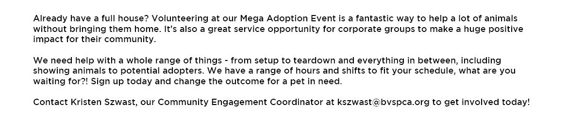 Mega Adoption Webpage-volunteer info