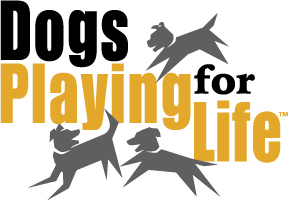 Dogs Playing for Life!