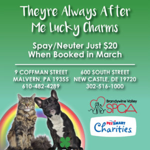 lucky-charms-pr-graphic - Brandywine Valley SPCA