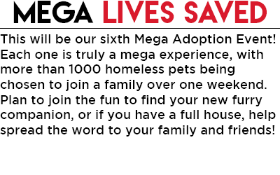 2019 Mega Adoption Main Webpage-Lives saved-body-June